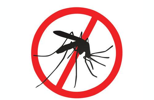 Luchemos contra el Dengue - Asociación Española
