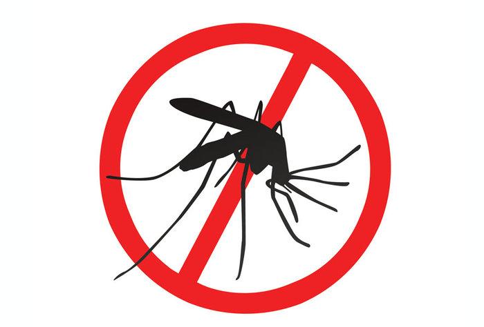 Luchemos contra el Dengue